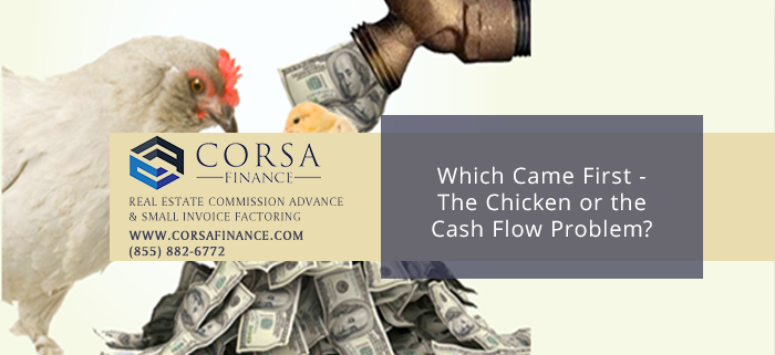 Which Came First - The Chicken or the Cash Flow Problems